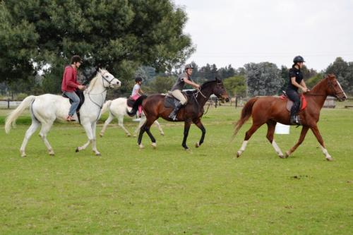 Adventure-filled horse riding & outrides, beginners to advanced