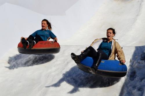 Rand Show snow-tubing sliding fun